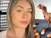 The Truth About Chickens & The Egg Industry